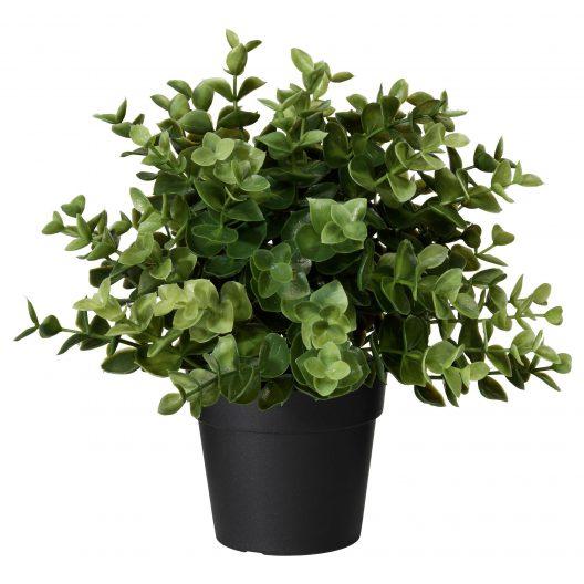 گل مصنوعی ایکیا مدل FEJKA